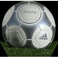 European Cup Ball 2000 (Terrestra Silverstream)