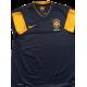 Brazil Away 2012-2013